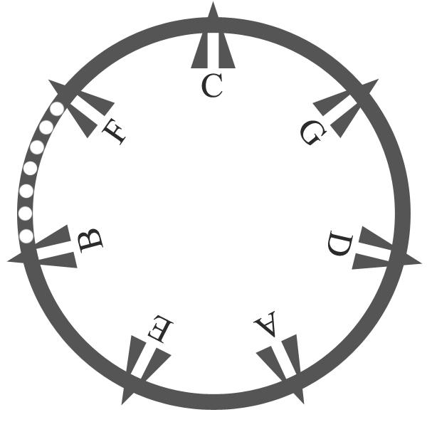 Diatonic circle of fifths
